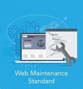 website maintenance package